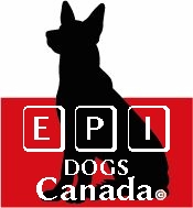 EPI in Dogs support in Canada